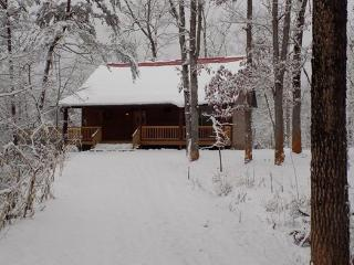 Bearadise Cabin in Franklin, NC  Sleeps 2