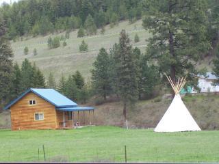 Cabin with Teepee
