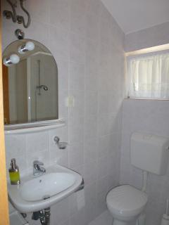 SA Jelena1 (2+1): bathroom with toilet