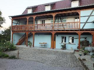 HOLIDAY IN ALSACE FOR 2/4 GUESTS, Kuhlendorf
