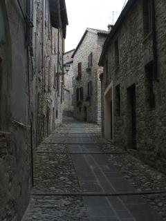 Calestano, in the village every year there is Black  Truffle  Fair.www.tartufonerofragno.it