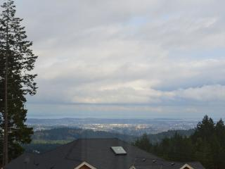 Panoramic View on Bear Mountain, Victoria