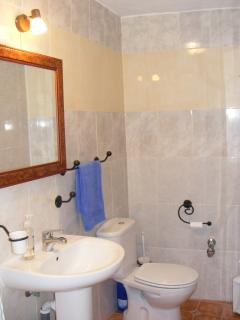 Casa Camelia  Shower Room.