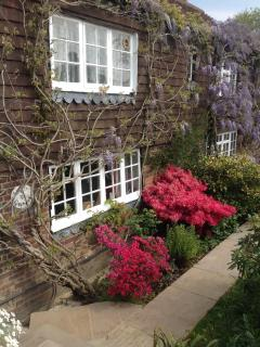 Wisteria covered frontage