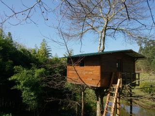 The Tree House - Casa da Arvore, Aveiro