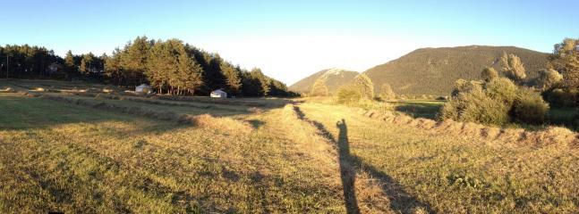 vue sur le jardin du bois faé en été