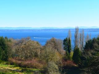 Luxury Entertainment Home with Ocean View, Vashon