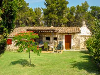 Adorable Provencal farmhouse in Saint-Remy-de-Provence with private garden and pool