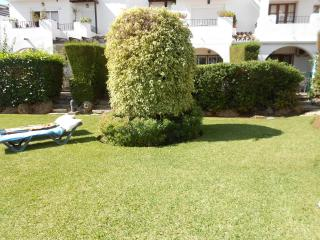 a small section of the gardens overlooking the pool