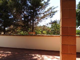 Sul retro della villetta si trova orto pertinenziale con alberi da frutto.