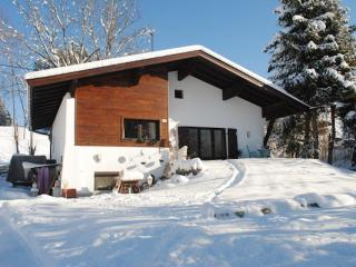 Vacation Apartment in Kirchberg in Tirol - 861 sqft, active, comfortable (# 7011)