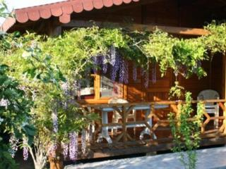 Windmolen Bungalow with Shared outdoor pool, Cirali