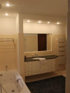 Spacious bathroom with Shower, Bath and Toilet which is directy connected to the master