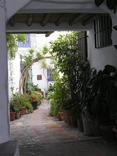 Frigiliana Courtyard