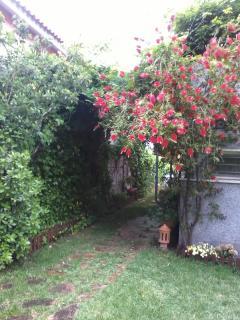Jardín (entrada a casa)