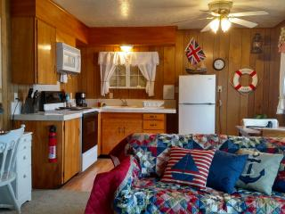 Moonraker - 1 BD, kitchen, beachfront, fireplace, Lincoln City