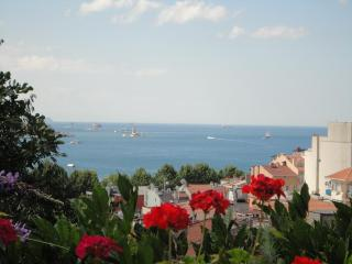 BOSPHORUS VIEW WITH GARDEN TERRACE, Istanbul