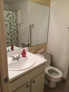 Master bedroom restroom