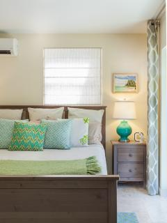 Lower king bed with kitchenette and bath