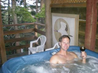 Cozy Shangrila - Ski and Hot Tub, Stateline
