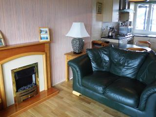 General view of the lounge showing the real Oak floor and furniture, and the leather sofa