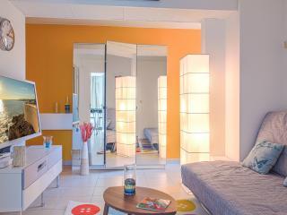 Splendid Apartment Center, Nice