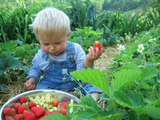 Tasty farm produce!