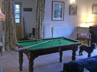 Snooker table in main room