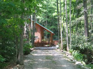 Mountain Log Cabin next to a creek with Hot tub, Butler