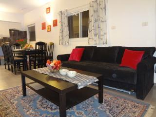 Tel-Aviv modern 2 bed 2 bath flat steps from beach