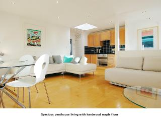Deluxe 5* Penthouse Apartment (Sleeps 4), Londres