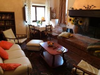 1BR Loft apartment La Bellavista - Chianti