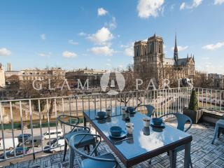 Incredible plunging Notre Dame views from the 2 terraces !