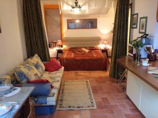 Cosy 1BR/1 BA suite/ studio, Castellina In Chianti
