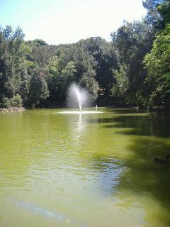 Il laghetto non fa parte della villa ma si trova nelle sue vicinanze ed è una riserva naturale ..