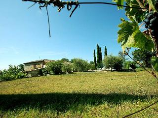 Secluded house with private pool 2 kms amenities, Narni