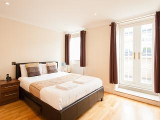 Terrace Apartment in Waterloo, London, SE1
