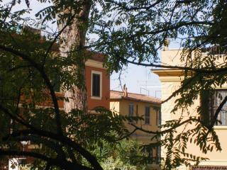LA GINESTRA-SUL COLLE VATICANO