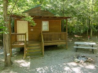 August Rate $85/Night Studio Cabin, Sleeps 5, Pet Friendly