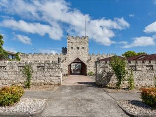 Castello A Mare--Unqiue Castle house in Auckland