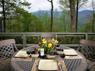 VIEWS VIEWS of Mt Mitchell from Front Deck - Hike, Explore, Relax & Enjoy Colors