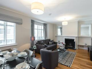 Large modern 1 bed knightsbridge apartment for 4
