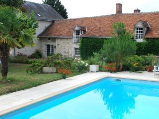 Gite des Camelias de Pallus with a pool