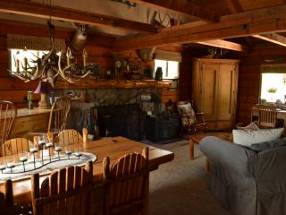 Beautiful secluded log cabin in Pikes Peak region, Lake George