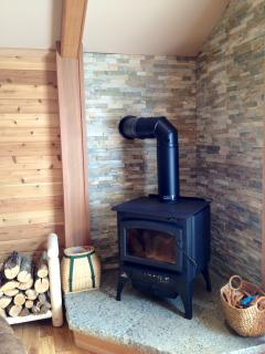 wood stove in living area