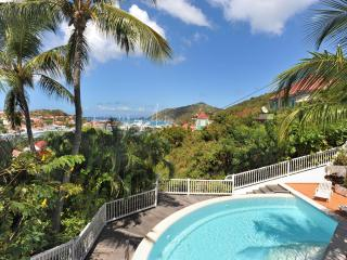 1 Bedroom with Private Pool in Gustavia