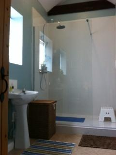 Luxury walk-in shower in bathroom (installed 2015)