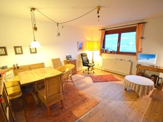 Cosy holiday apartment ski in and out near centre, Hinterthal
