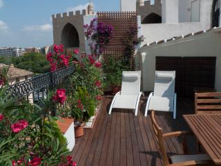 Apartment Loft Torres Serranos, Terrace old town