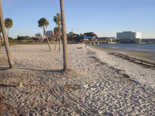 SAILPORT-Tampa Bay FL - Waterfront Vacation Condo